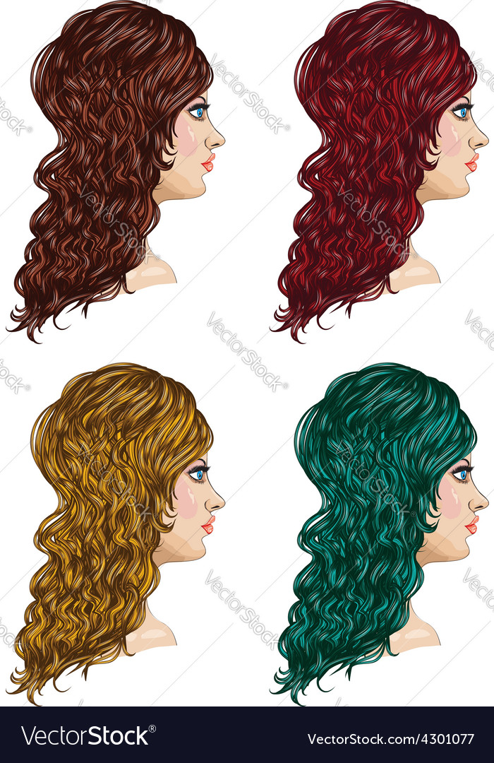 Curly hairstyle3 vector | Price: 1 Credit (USD $1)