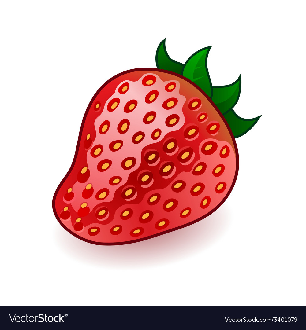 Isolated fresh shiny strawberry on white vector   Price: 1 Credit (USD $1)