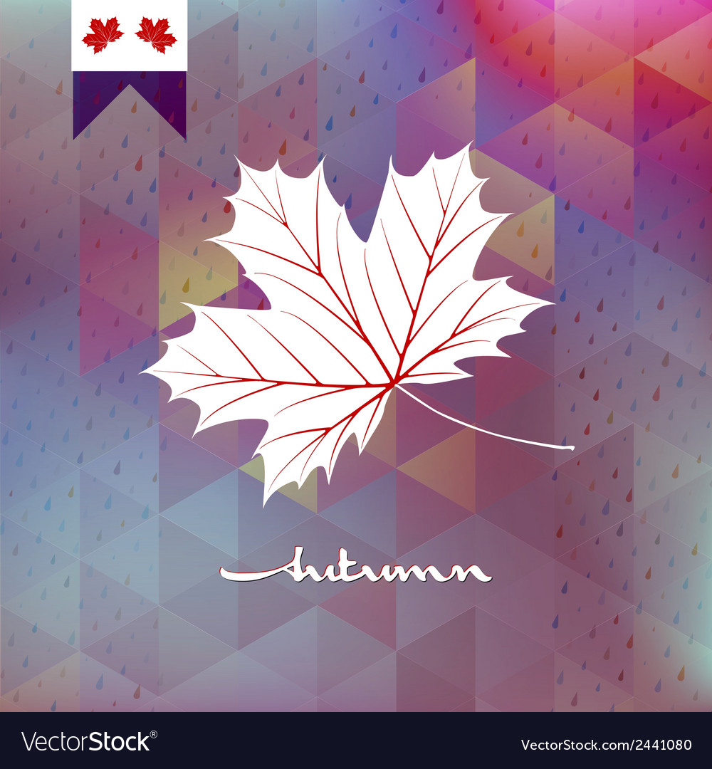 Autumnal maple leaf eps 10 vector | Price: 1 Credit (USD $1)