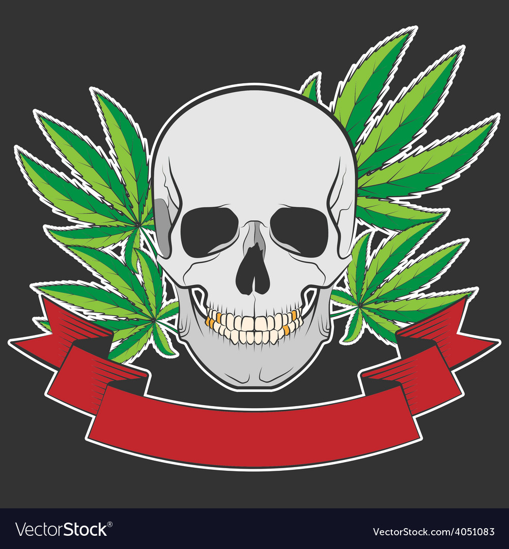 Skull and cannabis vector | Price: 1 Credit (USD $1)