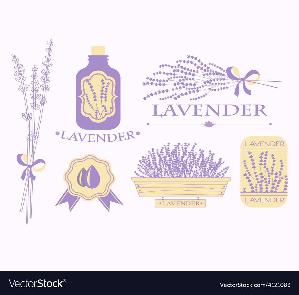Vintage lavender background aromatherapy and spa vector | Price: 1 Credit (USD $1)
