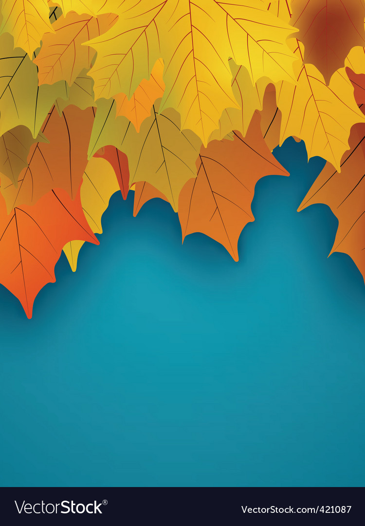 Orange fall maple foliage vector | Price: 1 Credit (USD $1)