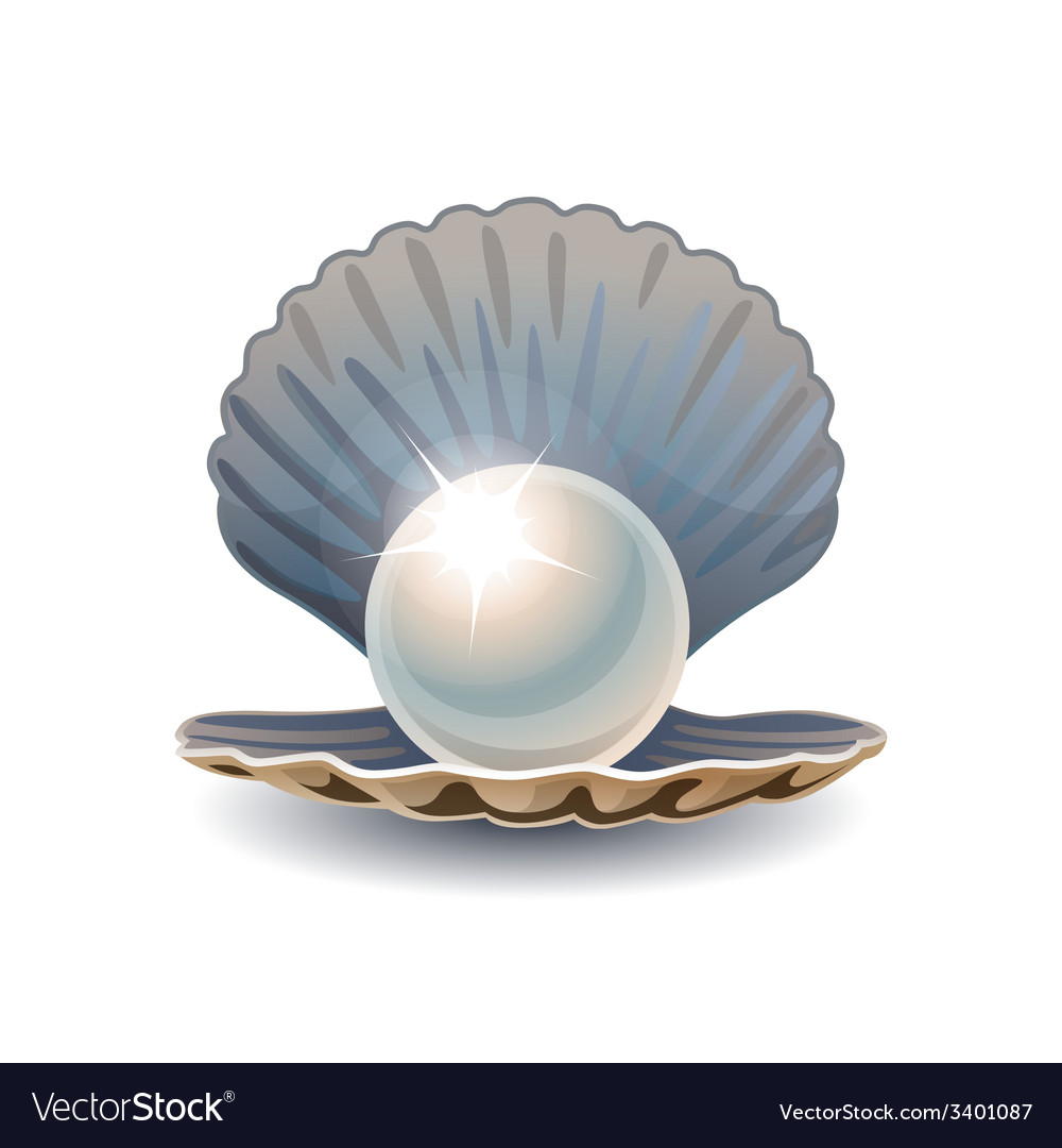 Shiny pearl in opened seashell vector | Price: 1 Credit (USD $1)