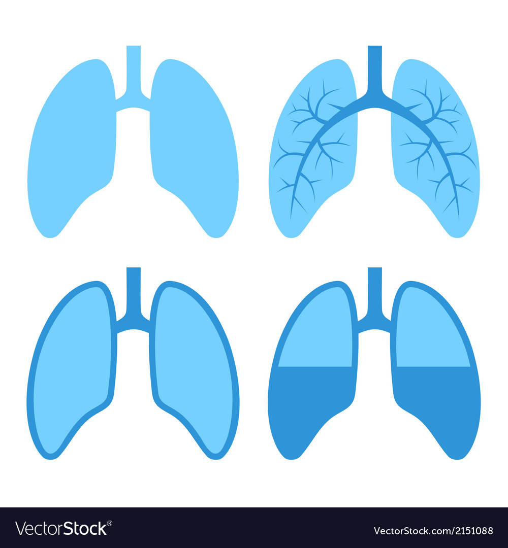 Human lung icons set vector | Price: 1 Credit (USD $1)