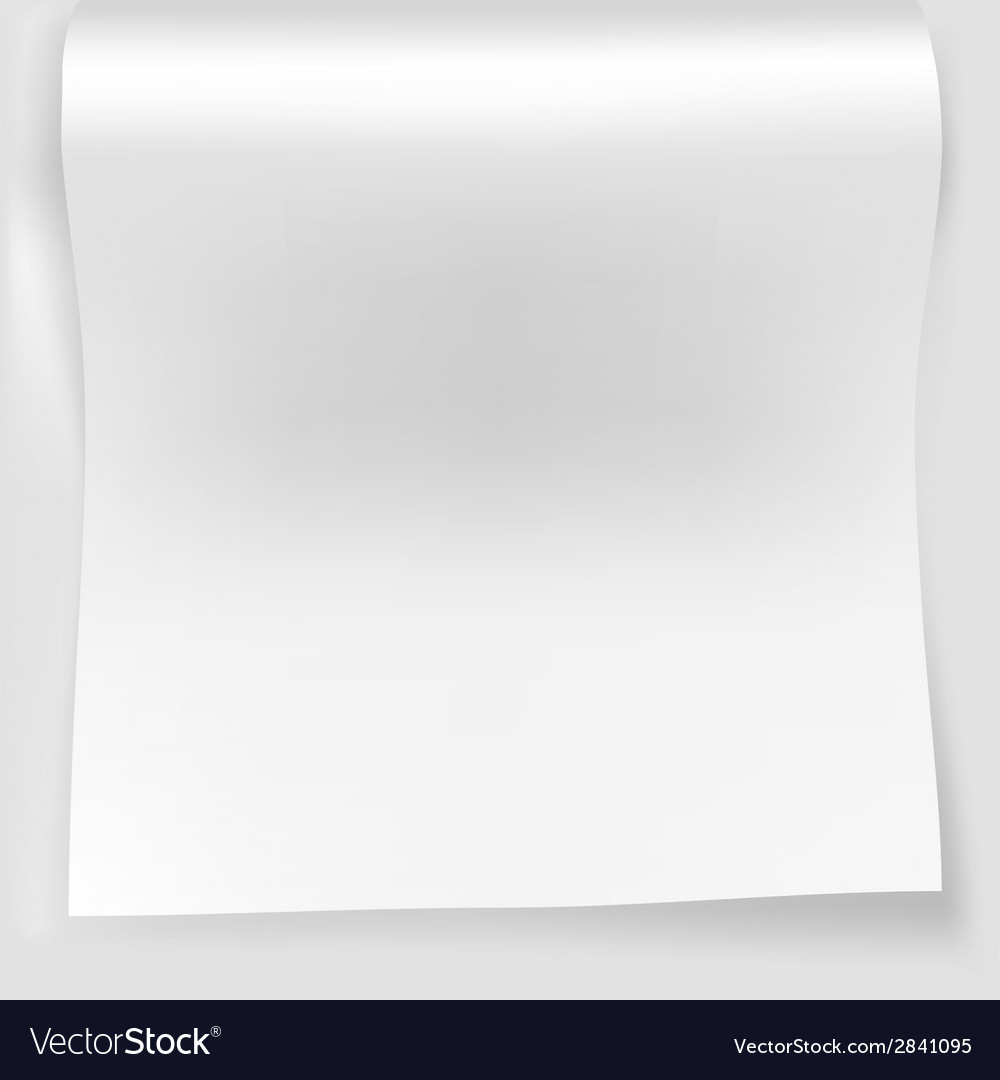 Blank white sheet of curved vector | Price: 1 Credit (USD $1)