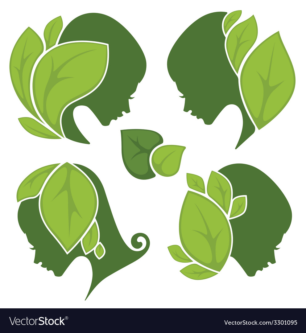 Leaf and beauty vector | Price: 1 Credit (USD $1)