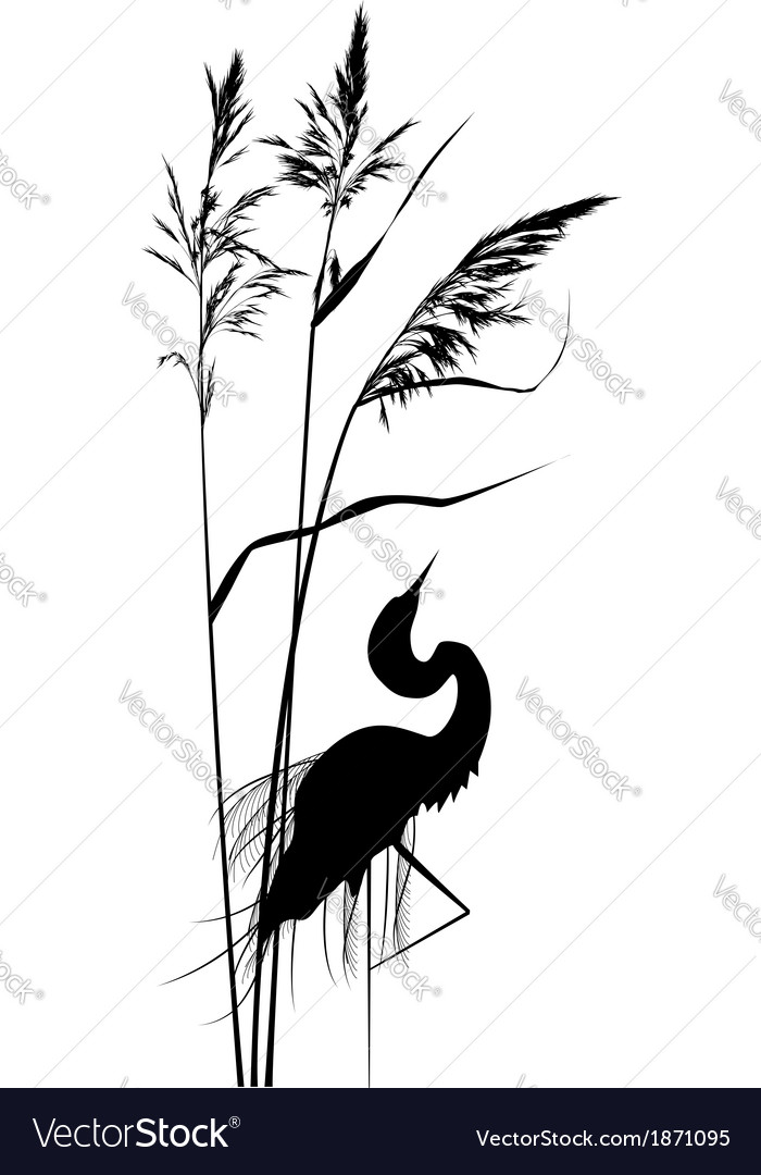 Reed and heron vector | Price: 1 Credit (USD $1)