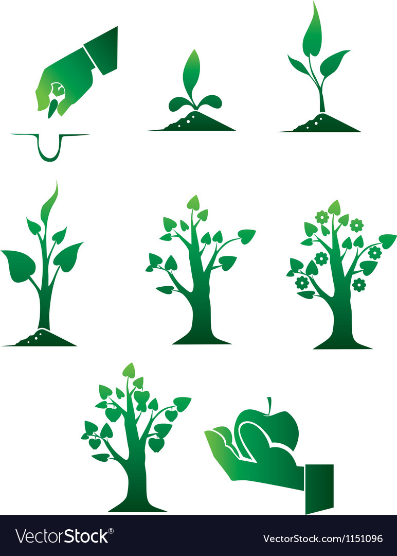 Planting of trees vector | Price: 1 Credit (USD $1)