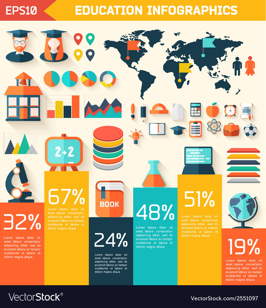 Flat education infographic background vector | Price: 1 Credit (USD $1)
