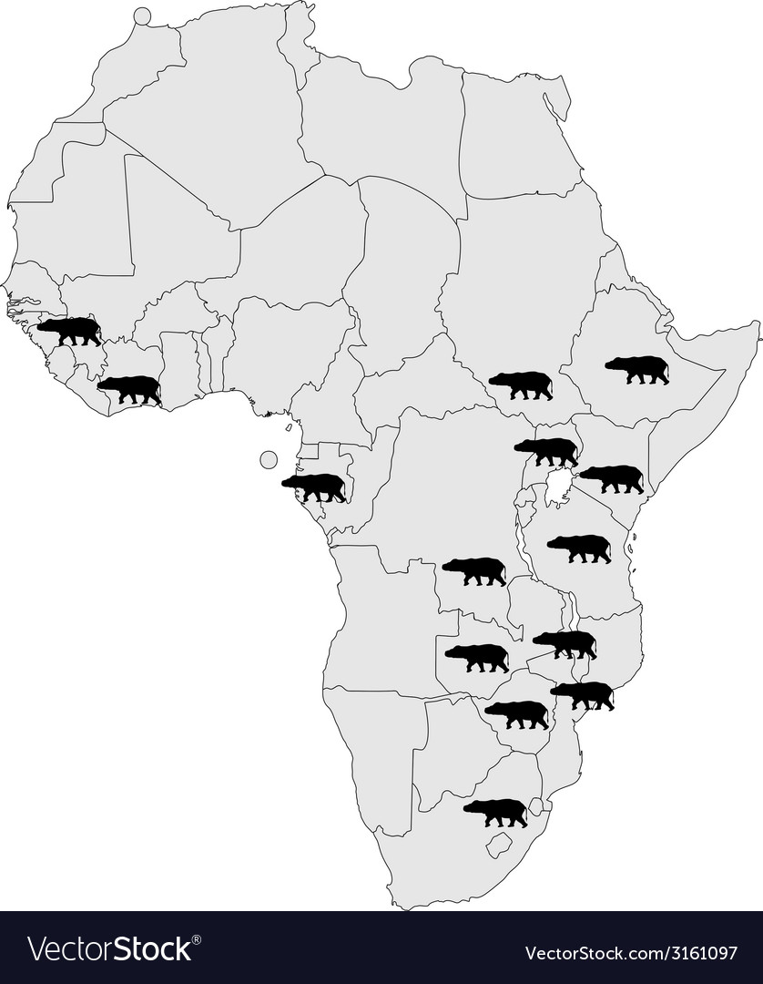 Hippo africa range vector | Price: 1 Credit (USD $1)