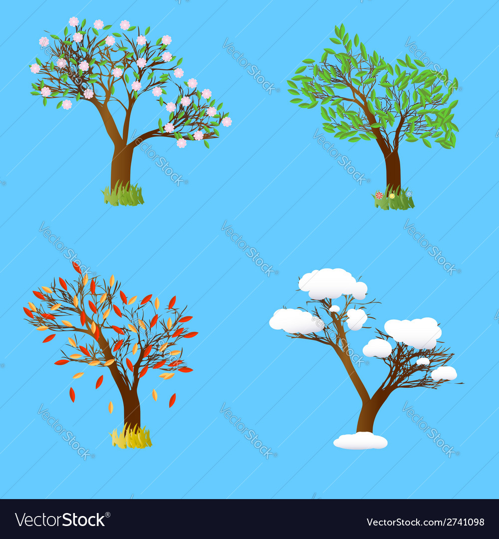 Four seasons tree vector | Price: 1 Credit (USD $1)