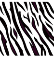 Zebra black and white pattern with stripes vector