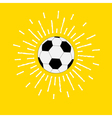 Football soccer ball with shining sunlight effect vector