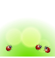 Green background with ladybirds vector