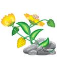 Fantasy flower vector
