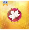 Autumnal maple leaf eps 10 vector