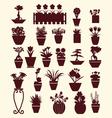 Set of flowers in pots plants garden vector