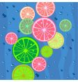 Lemons slices background vector