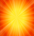 Orange template background vector