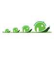 Four snail in green color in the grass vector