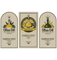 Olive oils vector
