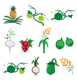 Fruit and vegetable cartoon vector