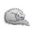 Light grey fluffy cat vector