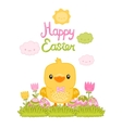 Happy easter cartoon cute chicken and eggs with vector