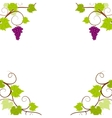 Grape vines frame vector