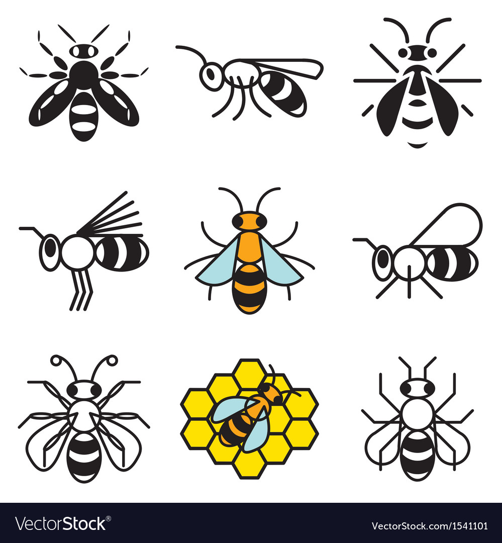 Logo icons bee vector | Price: 1 Credit (USD $1)