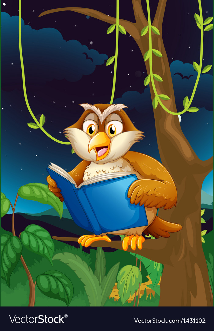 An owl reading vector | Price: 1 Credit (USD $1)