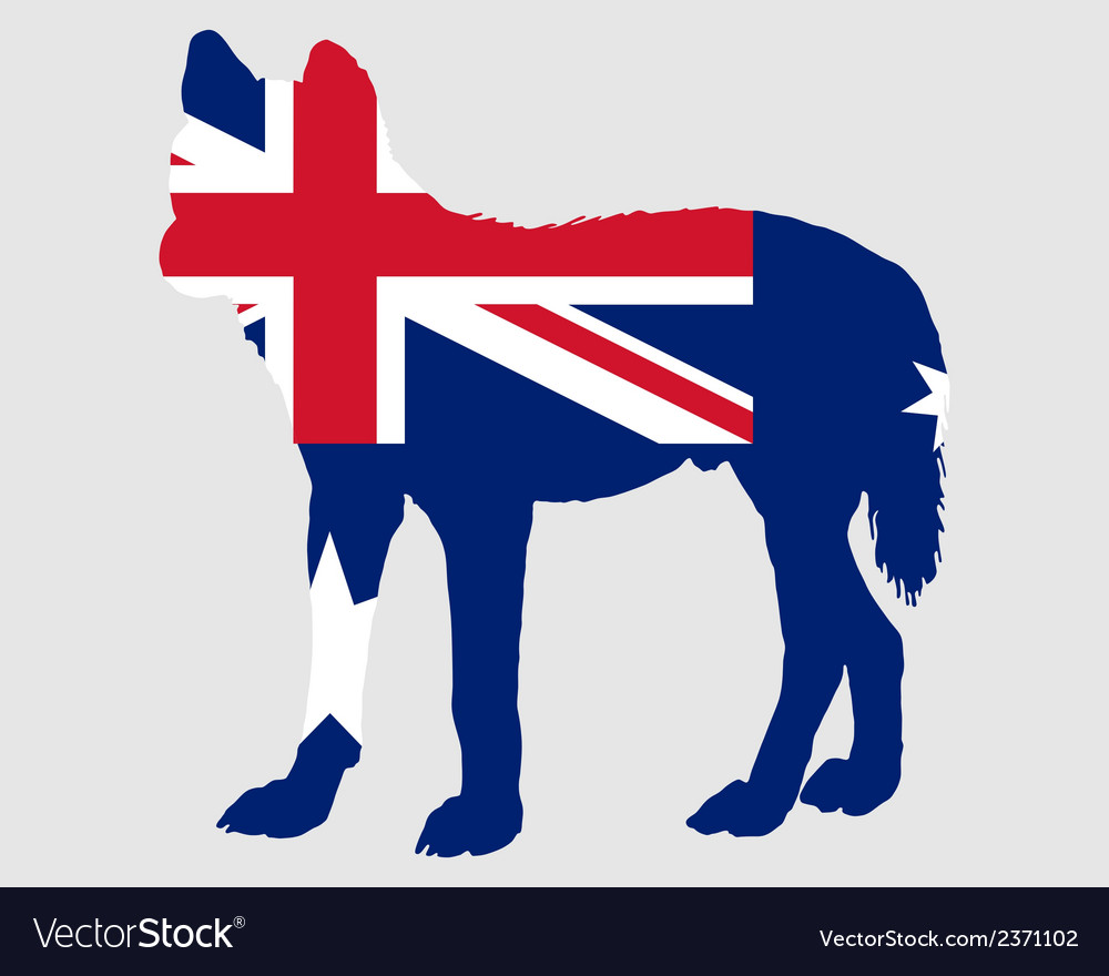 Australian dingo vector | Price: 1 Credit (USD $1)