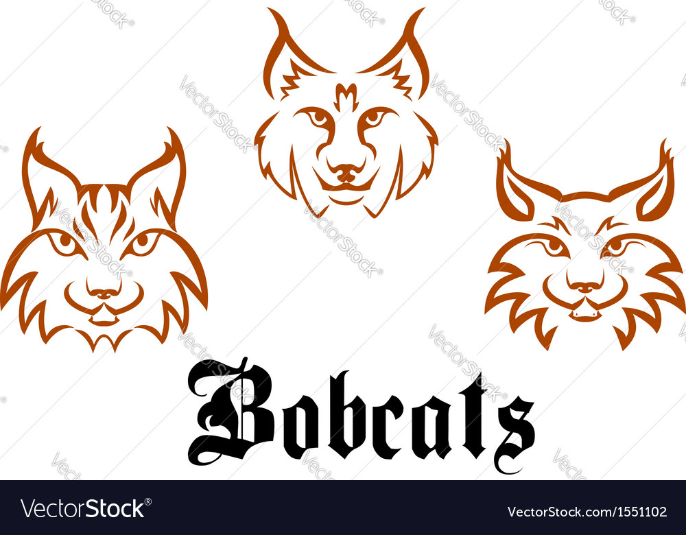 Bobcats and lynxs vector | Price: 1 Credit (USD $1)