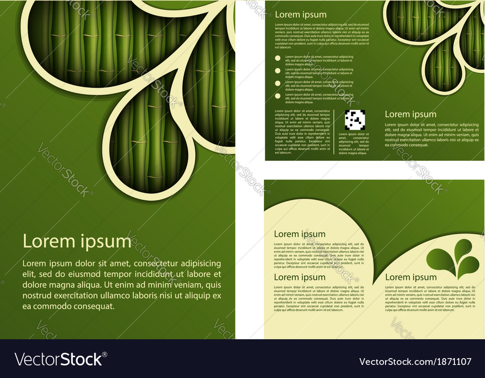 Bamboo design template vector | Price: 1 Credit (USD $1)