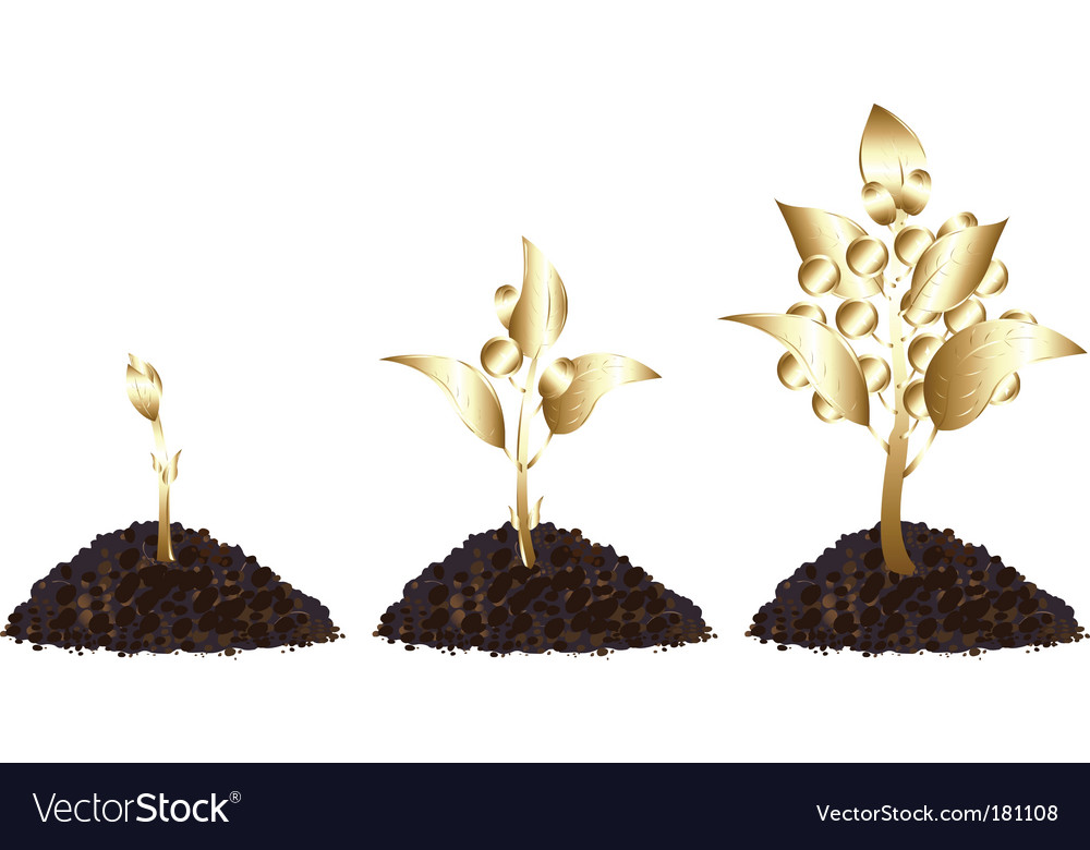 Life process of golden tree vector | Price: 1 Credit (USD $1)