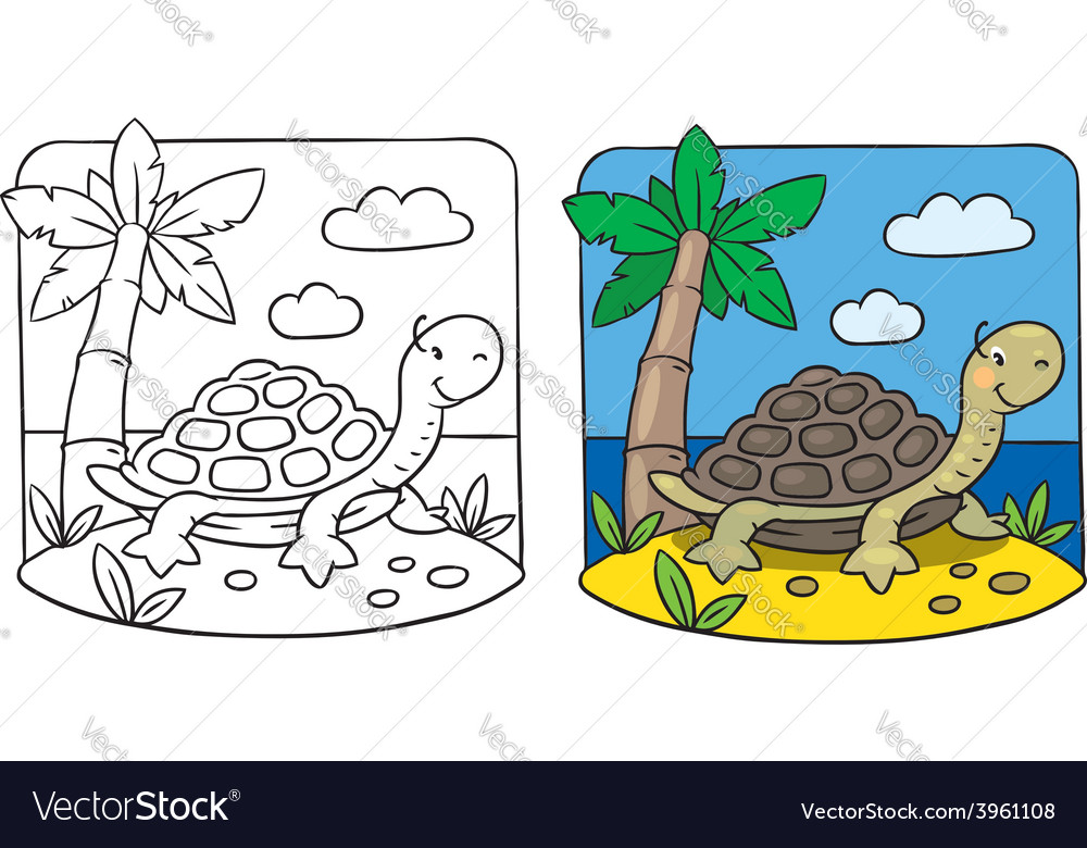 Little turtle coloring book vector | Price: 1 Credit (USD $1)
