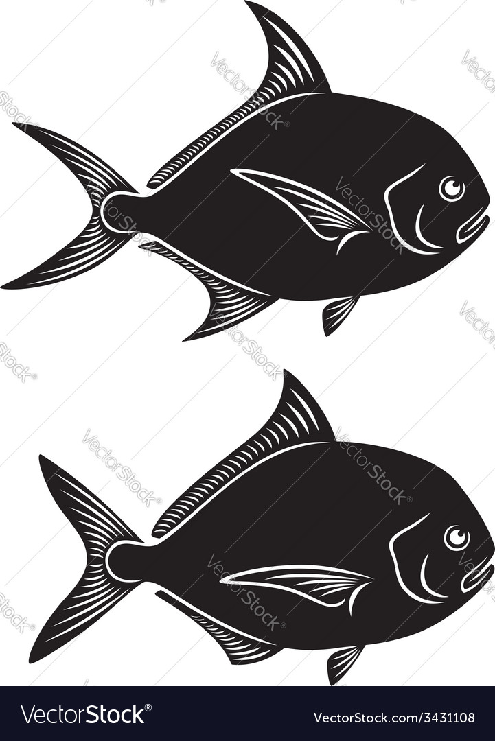 Pomfret fish vector | Price: 1 Credit (USD $1)