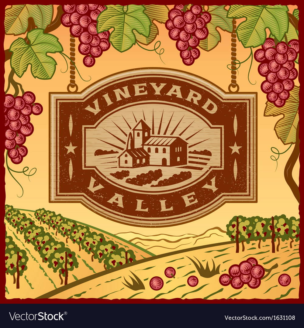 Vineyard valley vector | Price: 1 Credit (USD $1)