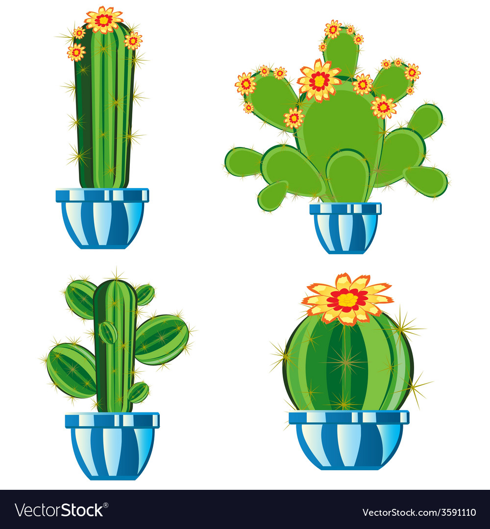 Cactuses in pot vector | Price: 1 Credit (USD $1)