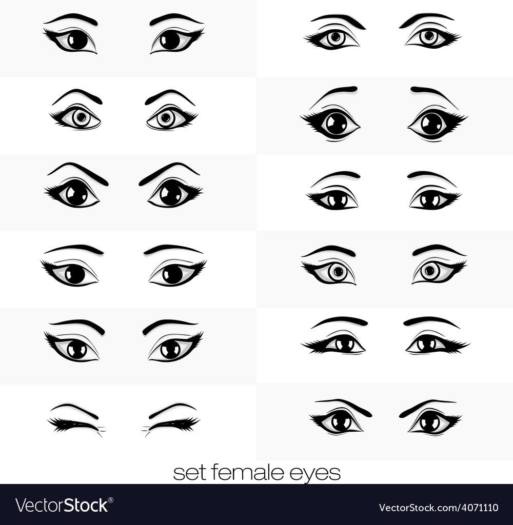 Set of views of a female eye vector | Price: 1 Credit (USD $1)