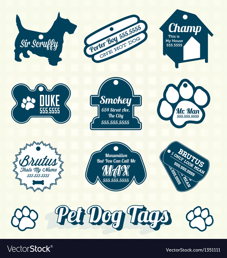 Pet dog name tag labels and icons vector
