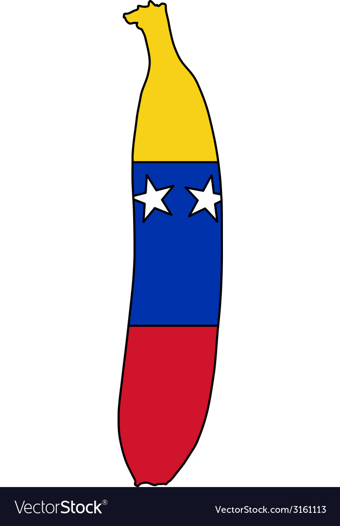 Banana of venezuela vector | Price: 1 Credit (USD $1)