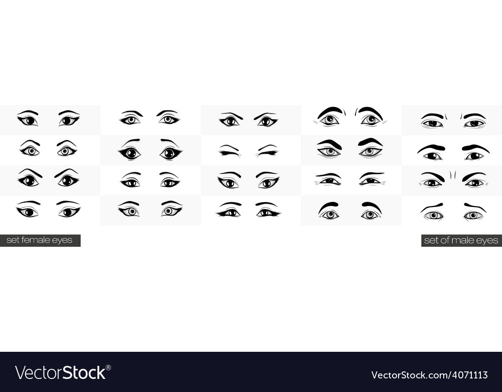 Set of female and male views of the eye vector   Price: 1 Credit (USD $1)
