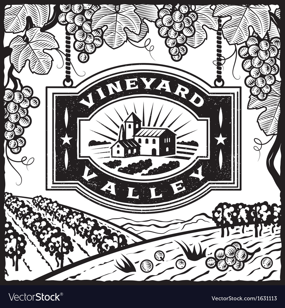 Vineyard valley black and white vector | Price: 1 Credit (USD $1)