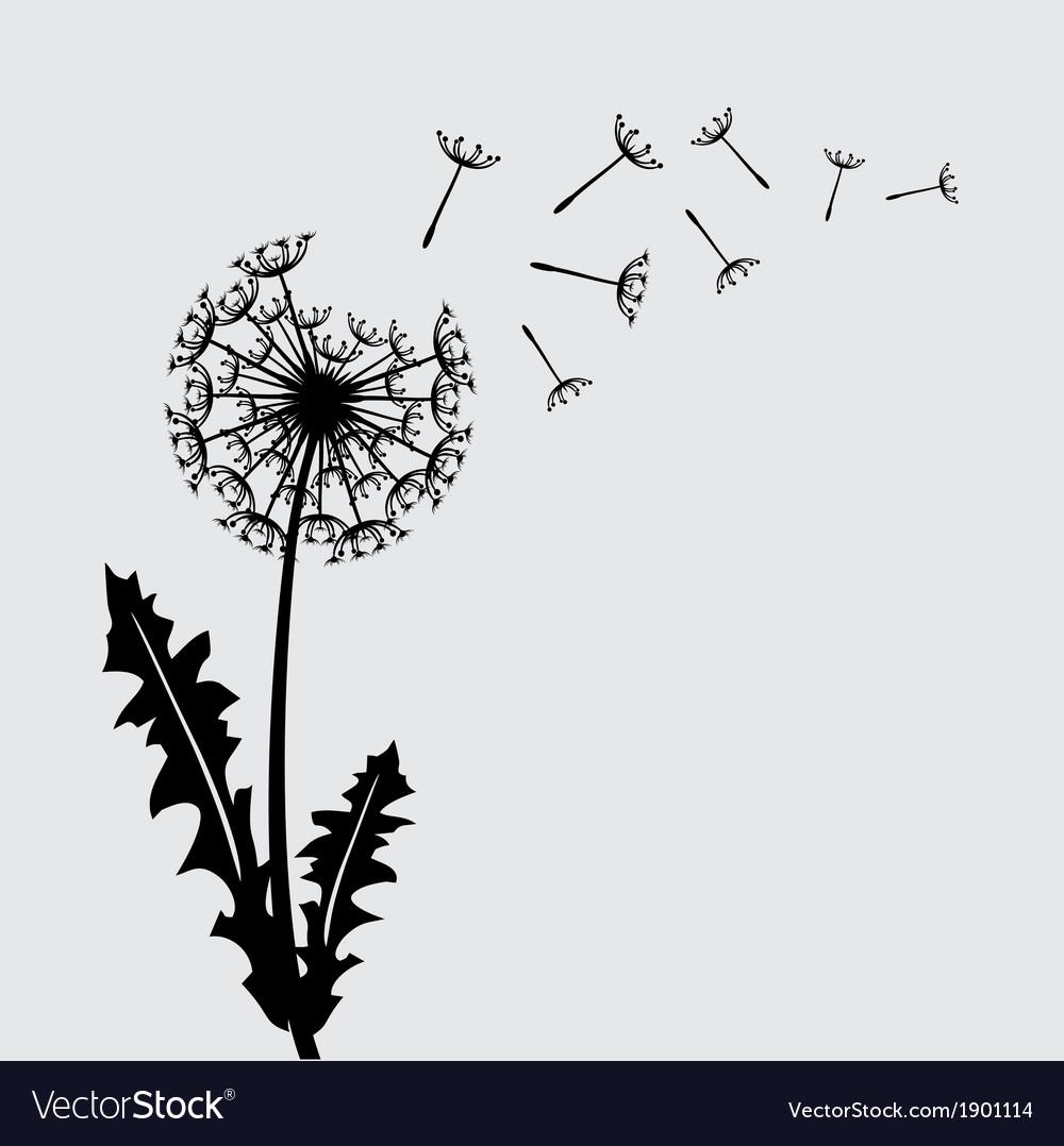 Blow dandelion background vector | Price: 1 Credit (USD $1)
