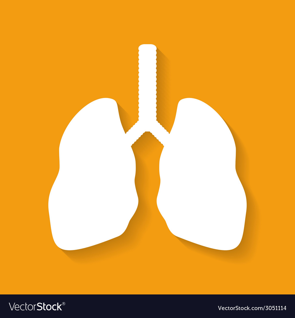 Icon of human lungs flat style vector | Price: 1 Credit (USD $1)