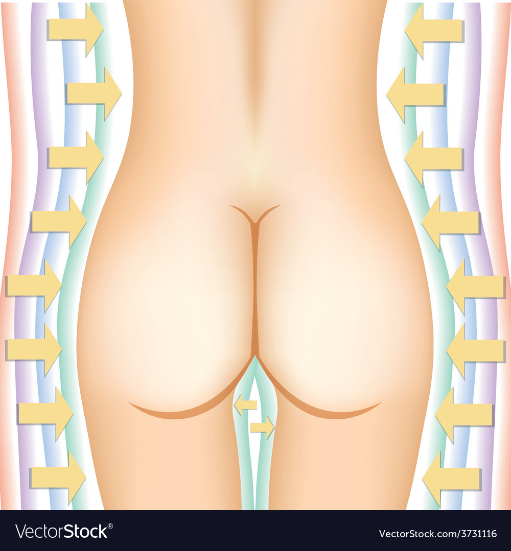 Woman nude back vector | Price: 1 Credit (USD $1)