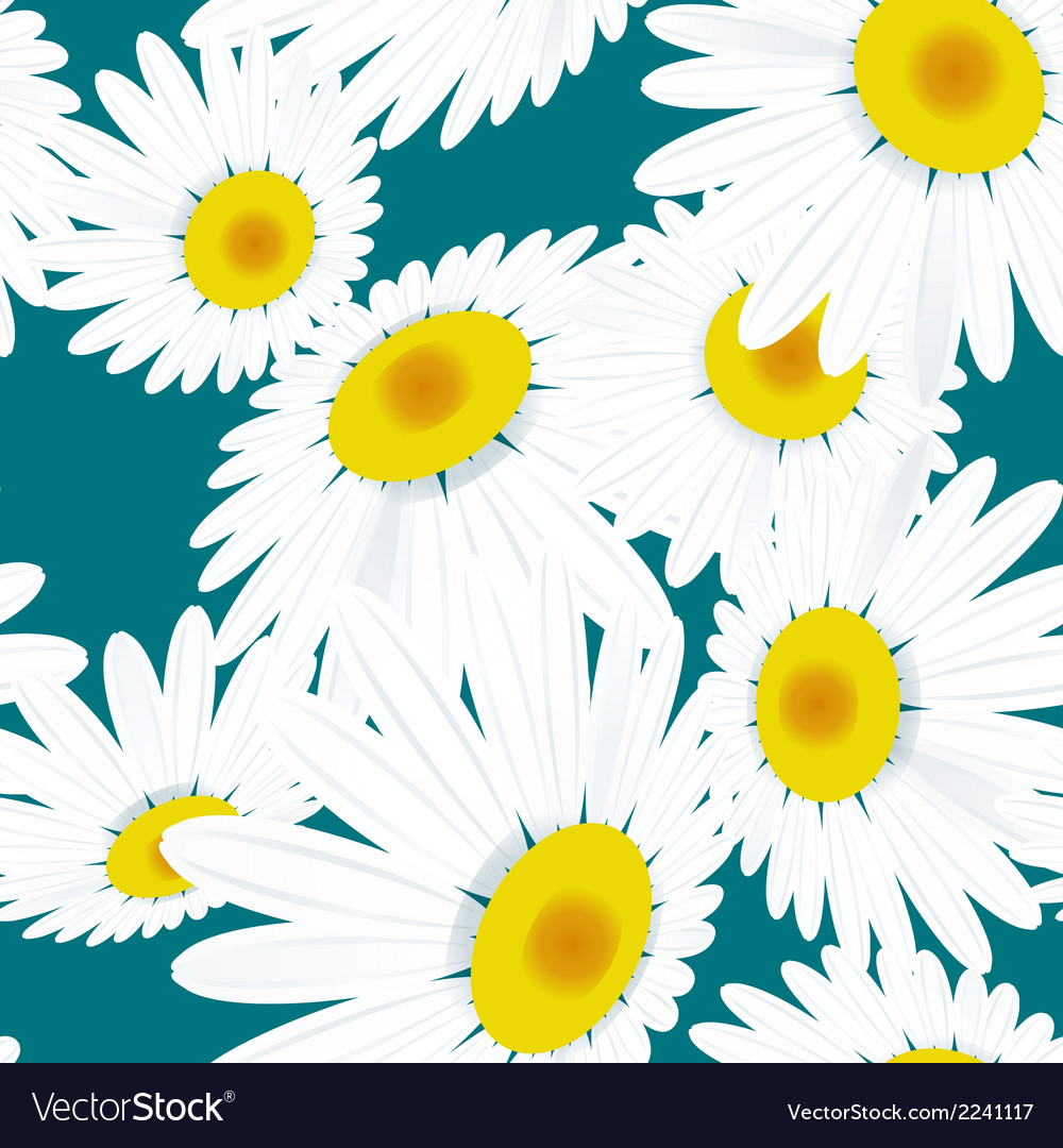 Seamless texture chamomile flowers eps 10 vector | Price: 1 Credit (USD $1)