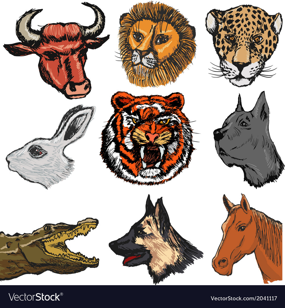 Set of animals vector | Price: 1 Credit (USD $1)