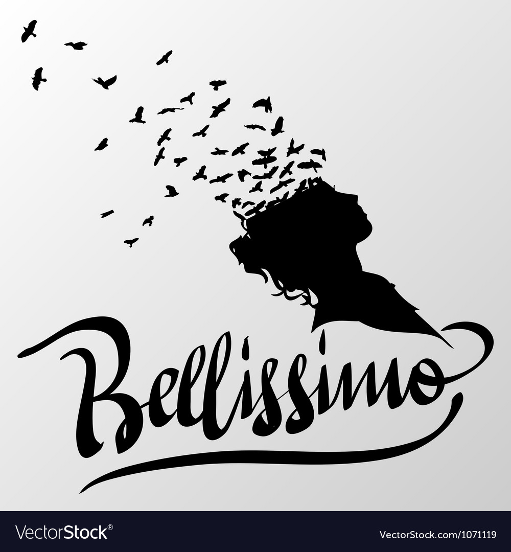 Bellissimo greetings hand lettering set vector | Price: 1 Credit (USD $1)